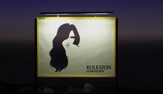 billboard na vlasovú kozmetiku